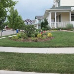 Residential flower bed gardening in Longmont by Green Guys