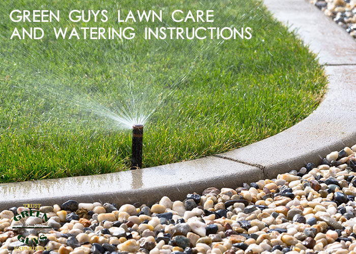 These lawn watering instructions from the green guys will help you keep your lawn healthy and growing