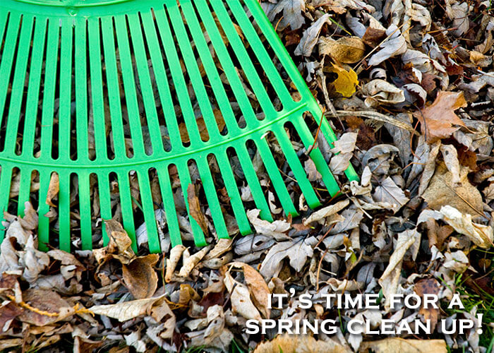 Clear the leftover leaves with a spring clean up from the Green Guys