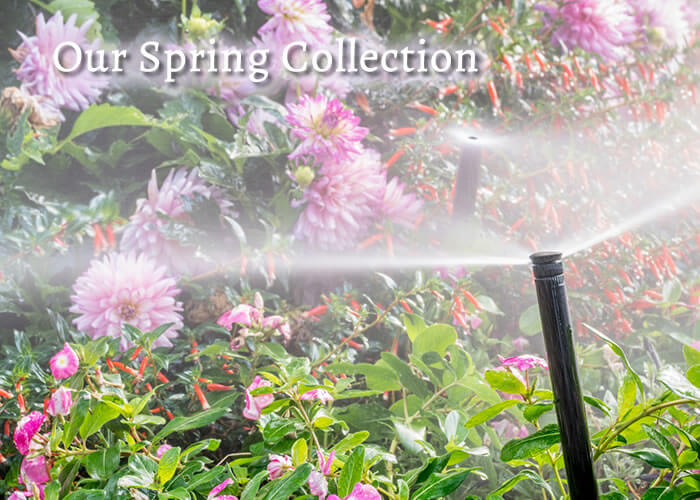 Spring Season Packages from Green Guys Landscaping - People You Can Trust!